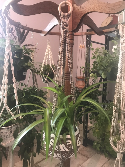 Fringe Macrame Plant Hanger