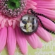 Glass DOme Pendant Necklace