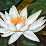 Water Lily Original Pastel Painting by Julie A. Brown