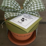 ::THE WINDOWSILL HERB POT� with Green  Ribbon::