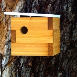 Case Study Modern Birdhouse in White