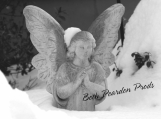 Angel in Snow