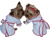 Dog Pet Terry Bath Robe  Color Choices   Sizes Medium - Large