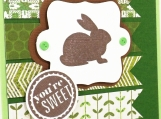 Easter Bunny Card in Green OR Pink