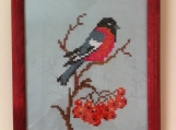 "'Bullfinch ""it is a  picture embroidered ,cross-stitch"
