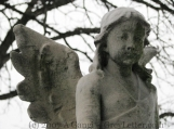YOUNG ANGEL - 8 x 10 Original Print Signed - Cemetery Photography