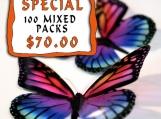 100 - 12 x Transparent Butterflies