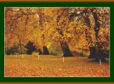 Autumn In The Park Cross Stitch Pattern