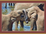 Young Elephants Cross Stitch Pattern