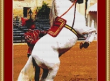 Trained Horse Cross Stitch Pattern