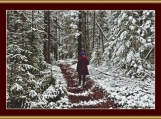 A Winter Walk Cross Stitch Pattern