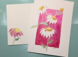 White Coneflowers Pink Background Isaiah 40:31 Hand-painted Card
