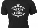 Awesome Since 1993  Birthday T-Shirt