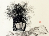 Bonsai, plants,scenery painting,water and ink painitng,Gift