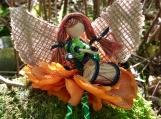 Coralia - Mudd Bay Blossom Faerie
