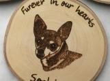 Personalized Dog Magnets,Wood Fridge Magnets,Wood Burned