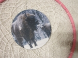 Dream Catcher 9.5 inch with Buffalo