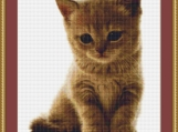 A Sweet Kitten Cross Stitch Pattern
