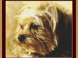 A Yorkshire Terrier Cross Stitch Pattern