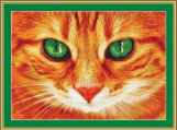 Beautiful Green Eyes Cross Stitch Pattern