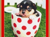 Chihuahua In A Cup Cross Stitch Pattern