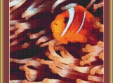Clown Fish Cross Stitch Pattern