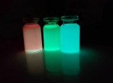 Glow in the dark potion necklaces