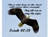 11 x 14 Printable, Soar Like An Eagle, Isiah 40:31