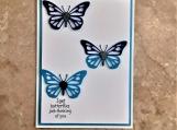 Butterflies Greeting Card
