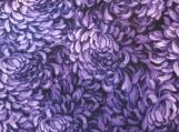 Wide Kool Breezy Neck Wrap - Purple Dahlias