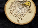 Eagle on Wood