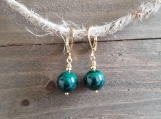 Healing Earrings - Malachite - Stainless Steel - Golden - 10 mm