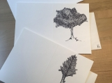 3pk Hand drawn Blank Note Cards - Trees | Modern | Minimalistic