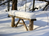 Winter Bench in the Forest, Photo Print 8' x 6'