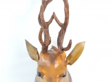 Stag Wall Head