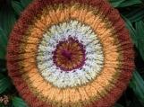 Joline Wool Handknit Cabled Tam