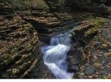 """Watkins Glen in Fall 16"""" x 20"""" fine art photograph poster"""