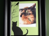 Here Birdie Birdie! Purr-fect for your Kitty Cat Mat