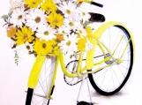"""Sunshine and Biking! PERFECT!"", Original Native Canadian Painting"