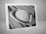 Abstract photo notecard - stone and seashell
