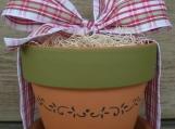::THE WINDOWSILL HERB POT...flower garden kit ::