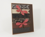 Dragonflies Any Occasion Card