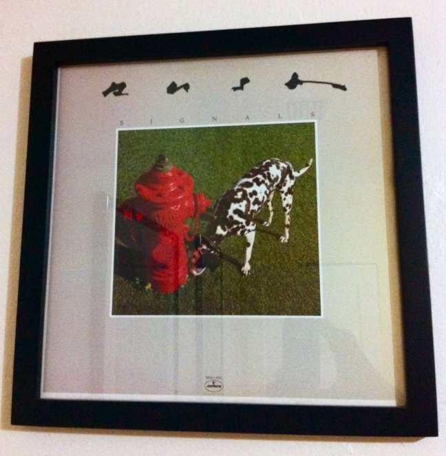 rush album framed, gift