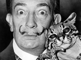 Salvador Dali with his wild cat, ocelot.