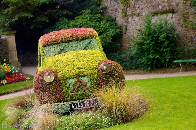 Car a a flower bed.