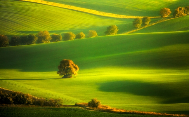 Autumn time by Pawel Uchorczak.