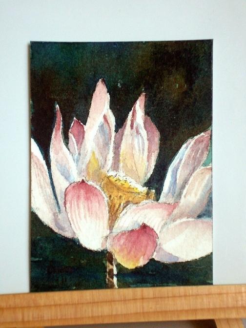 Peaceful Morning Lotus Original ACEO.