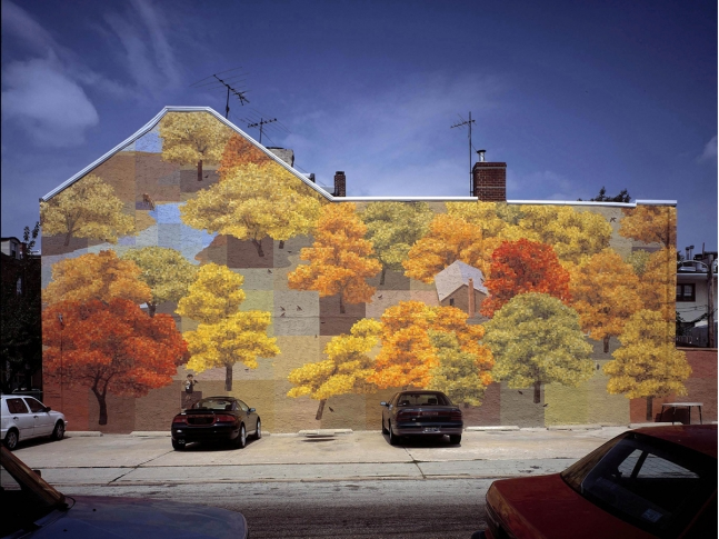 Wall Murals by David Guinn.
