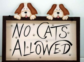 No Cats Allowed - Sign