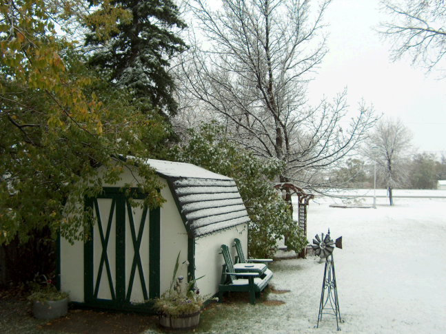 yard in Estevan
